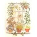 Pako 215.353 Цветы на окне