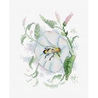 Жар-птица М-386 Свежесть нектара