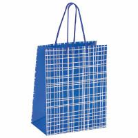 """ЗОЛОТАЯ СКАЗКА 606597 Пакет подарочный 17,8x9,8x22,9 см, ЗОЛОТАЯ СКАЗКА """"В голубую клетку"""", ламинированный, 606597"""