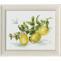 Золотое руно ФС-006 Веточка лимона