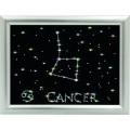 Золотое руно ХК-007 Созвездие Рак