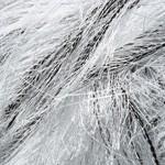 Пряжа для вязания YarnArt Jungle (Ярнарт Джангл) Цвет 18 светлая чернобурка
